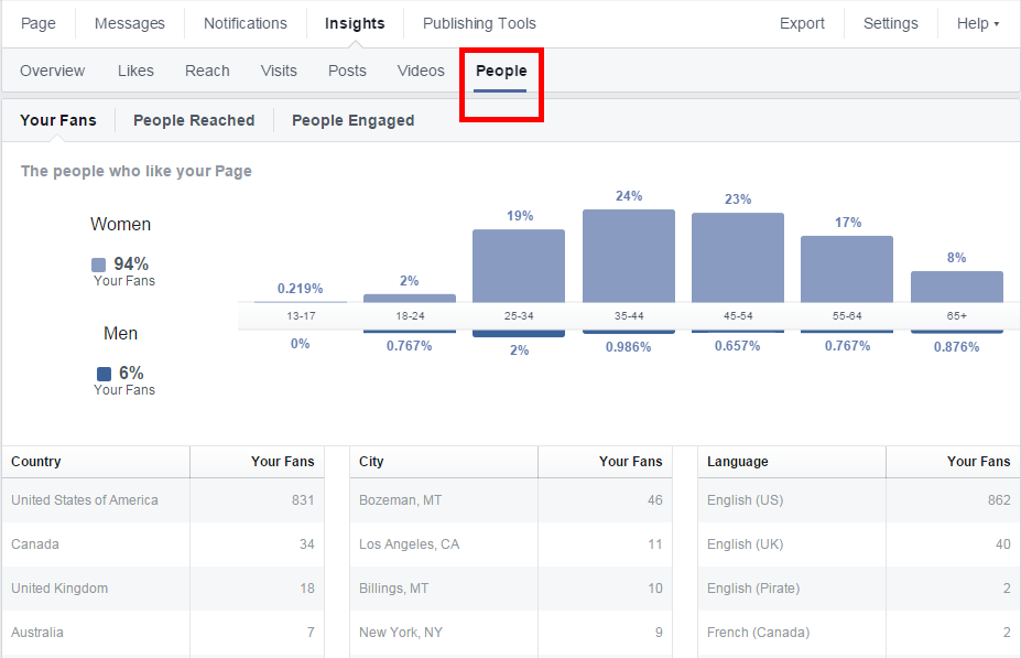 how to use audience insights to create an ad